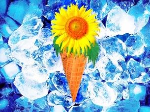 花の写真素材 [FYI01259110]