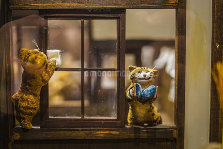 猫の学校の写真素材 [FYI01259235]