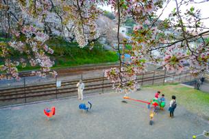 春の山北駅(神奈川県足柄上郡)の公園の写真素材 [FYI01259266]