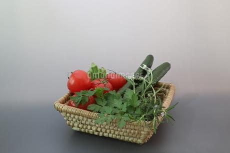 様々な野菜が入ったカゴの写真素材 [FYI01259289]