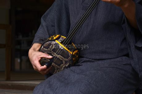 沖縄県,伝統芸能三線の写真素材 [FYI01259326]