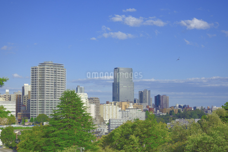 杜の都 仙台の写真素材 [FYI01259333]