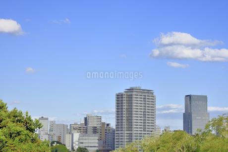 杜の都 仙台の写真素材 [FYI01259336]
