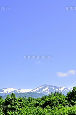 月山 残雪と新緑の写真素材 [FYI01259341]