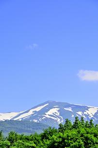 月山 残雪と新緑の写真素材 [FYI01259342]