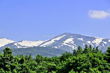 月山 残雪と新緑の写真素材 [FYI01259343]