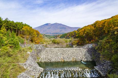 秋色の蔵王とやまびこ吊り橋付近の写真素材 [FYI01259345]