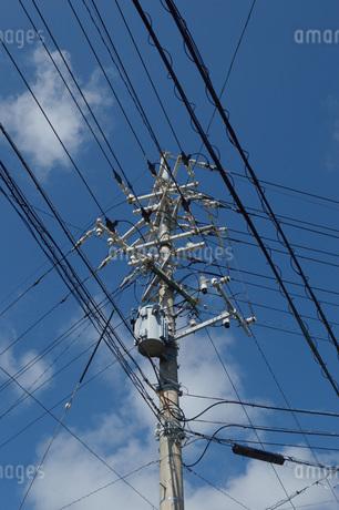 電柱とあらゆる方向に伸びる電線の写真素材 [FYI01259440]