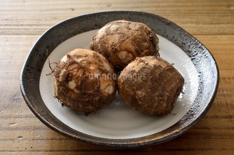 里芋の写真素材 [FYI01259510]