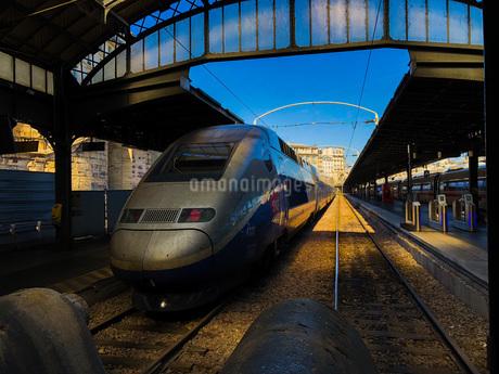 パリ東駅のTGVの写真素材 [FYI01259621]