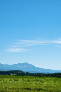 緑の牧草畑と夏山 大雪山の写真素材 [FYI01259696]