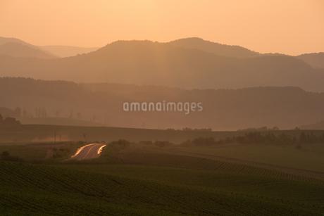 雨上がりの丘陵地帯 美瑛町の写真素材 [FYI01259700]