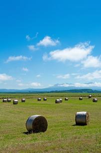 緑の牧草畑と牧草ロールの写真素材 [FYI01259707]