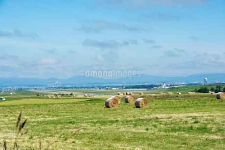 緑の牧草畑と牧草ロールの写真素材 [FYI01259708]