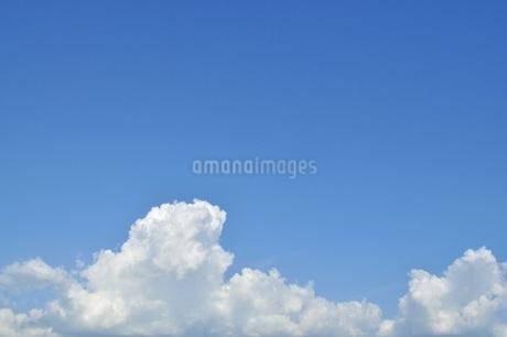 青い空にふわふわの白い雲 コピースペースの写真素材 [FYI01259807]