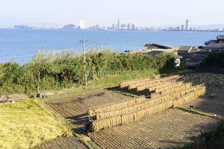 福岡県,能古島の写真素材 [FYI01259835]