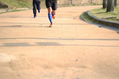 公園で走る男性の足の写真素材 [FYI01259865]