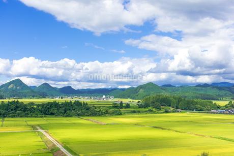 さわやか 山形県金山町の写真素材 [FYI01259883]