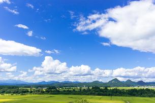 さわやか 山形県金山町の写真素材 [FYI01259885]
