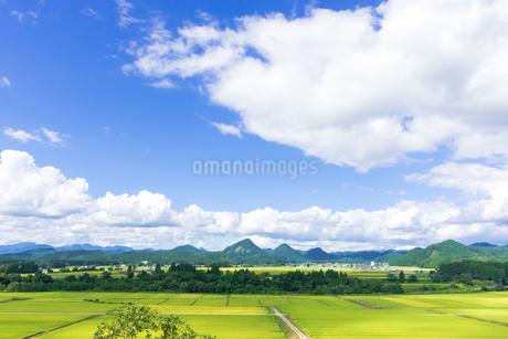 さわやか 山形県金山町の写真素材 [FYI01259887]