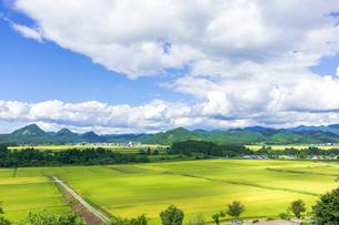 さわやか 山形県金山町の写真素材 [FYI01259894]