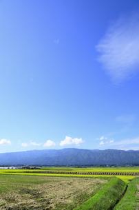 秋色の山形県白鷹町の写真素材 [FYI01259904]