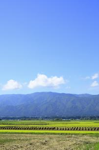 秋色の山形県白鷹町の写真素材 [FYI01259905]