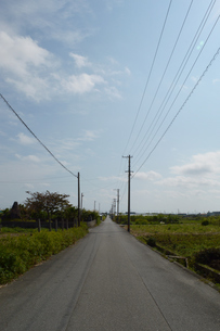 田舎の奥に伸びる直線の一本道の写真素材 [FYI01259997]