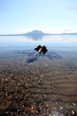 北海道支笏湖の春の風景の写真素材 [FYI01260219]