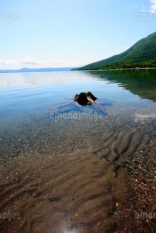 北海道支笏湖の春の風景の写真素材 [FYI01260222]