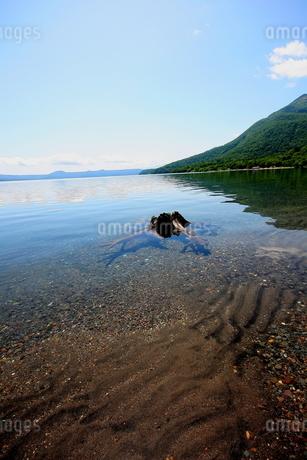 北海道支笏湖の春の風景の写真素材 [FYI01260225]