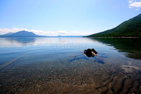北海道支笏湖の春の風景の写真素材 [FYI01260228]