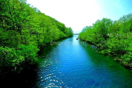 早春の北海道支笏湖の風景の写真素材 [FYI01260250]