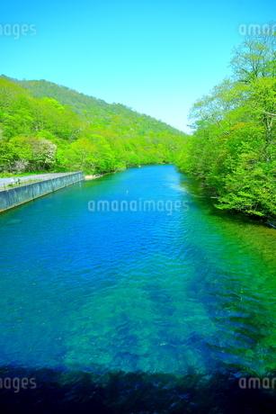 早春の北海道支笏湖の風景の写真素材 [FYI01260254]