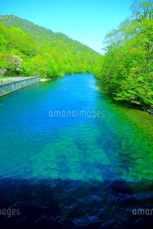 早春の北海道支笏湖の風景の写真素材 [FYI01260256]