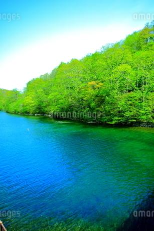 早春の北海道支笏湖の風景の写真素材 [FYI01260258]