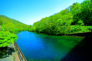 早春の北海道支笏湖の風景の写真素材 [FYI01260259]