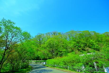 早春の北海道支笏湖の風景の写真素材 [FYI01260260]