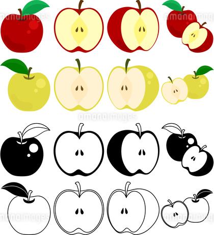 りんごと梨の可愛いアイコンのイラスト素材 [FYI01260505]