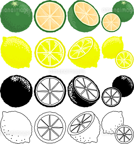 スウィーティーとレモンの可愛いアイコンのイラスト素材 [FYI01260507]
