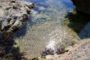 磯遊びのできる海岸の写真素材 [FYI01260513]