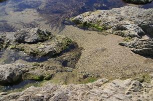 磯遊びのできる海岸の写真素材 [FYI01260515]