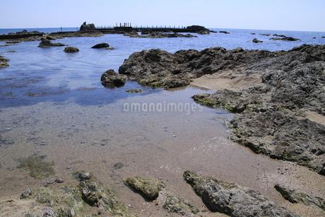 磯遊びのできる海岸の写真素材 [FYI01260516]