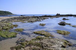 磯遊びのできる海岸の写真素材 [FYI01260517]