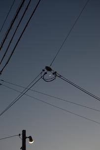 電線の中央に三日月の写真素材 [FYI01260524]
