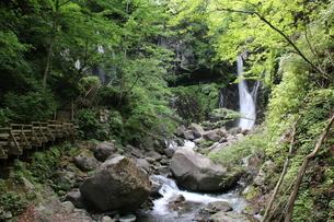 日光、裏見の滝の写真素材 [FYI01260531]