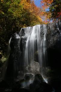 紅葉と滝の写真素材 [FYI01260547]