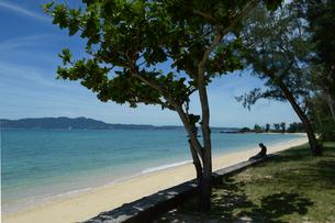 綺麗なビーチの木陰で休む老人の写真素材 [FYI01260557]