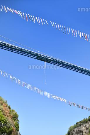 竜神大吊橋のバンジージャンプの写真素材 [FYI01260562]