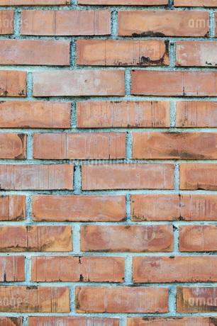 レンガの壁の写真素材 [FYI01260804]